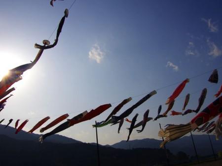 2012 下呂温泉鯉のぼり 冨岳