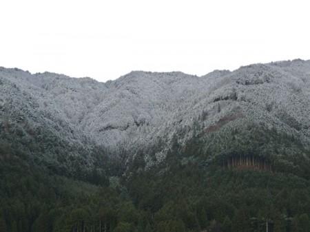 2013年初雪