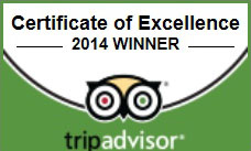Certificate of Excellence2014受賞
